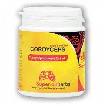 Cordyceps 90 kapslí